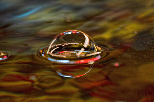 Refraction Wall Art - Photograph - UFO by Susan Capuano