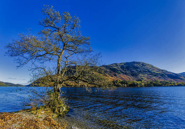 Glenridding Wall Art - Photograph - Ullswater Autumn by Trevor Kersley