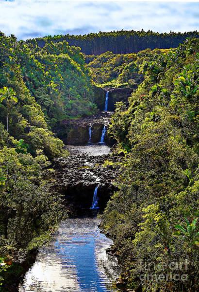 Photograph - Umauma Falls II by Patricia Griffin Brett