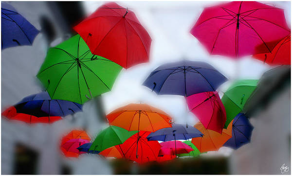 Photograph - Umbrellas In The Mist by Wayne King