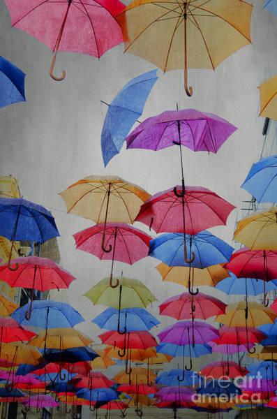 Rain Photograph - Umbrellas by Jelena Jovanovic