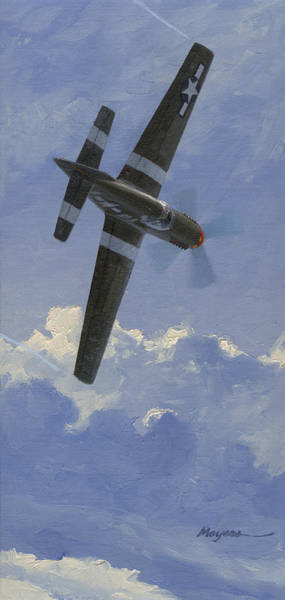 Fighter Pilot Wall Art - Painting - Unbridled Stallion by Wade Meyers