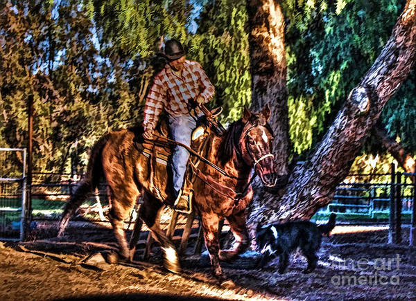 Norco Photograph - Unbridled by Tommy Anderson