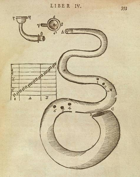Manuscript Photograph - Uncoiled Trumpet by Middle Temple Library