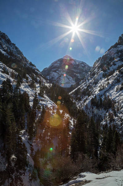 Wintry Photograph - Uncompahgre Gorge by Jim West/science Photo Library