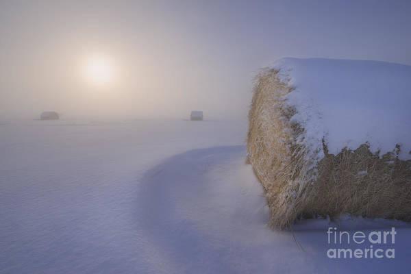 Hay Bale Wall Art - Photograph - Under A Blanket Of Snow by Dan Jurak