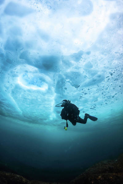 Underwater Diving Photograph - Under Ice by Nudiblue