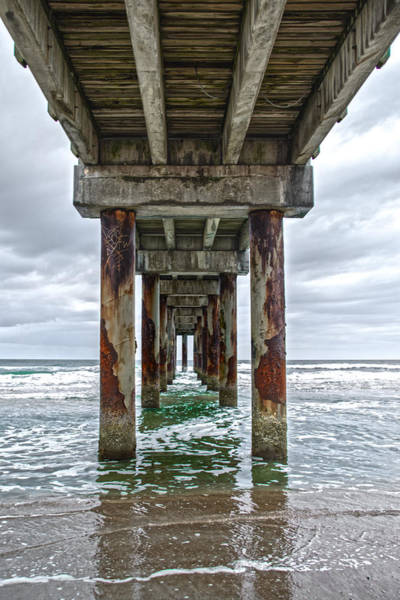 Photograph - Under Pier by Judy Hall-Folde