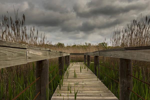 Photograph - Under The Boardwalk by Jonathan Davison