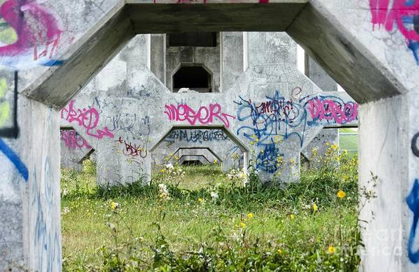 Wall Art - Photograph - Under The Bridge by Sophie Vigneault
