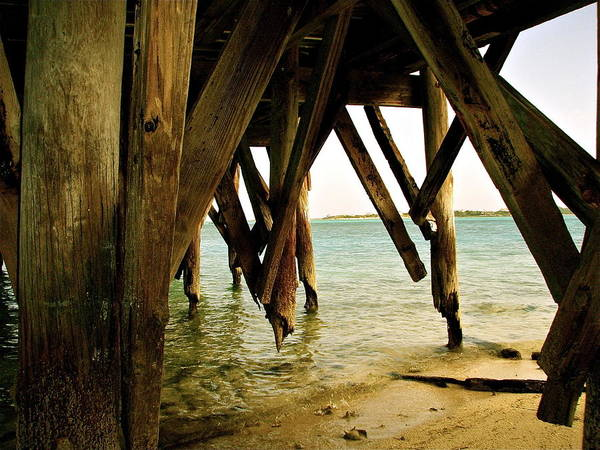 Photograph - Under The Broke Dock by Kim Pippinger