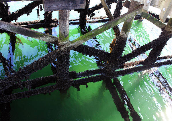 Photograph - Under The Pier by Gerry Bates