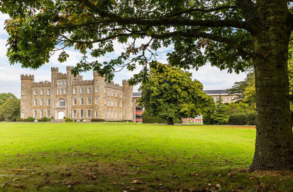 Preston Castle Photograph - Under The Populus Tree by Semmick Photo