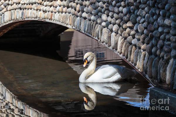 Photograph - Underneath The Arch by Mary Lou Chmura