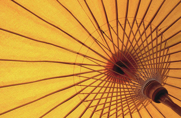 Parasol Photograph - Underside Of Yellow Parasol, Symbol Of by Antony Giblin