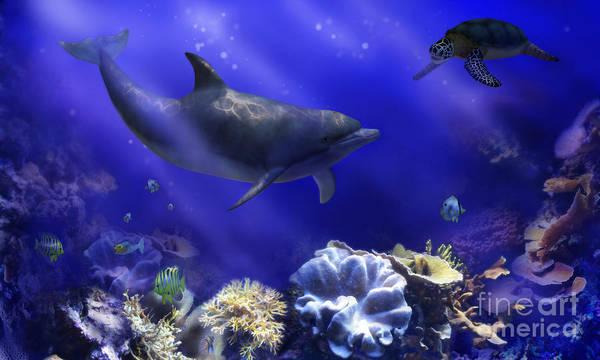 Underwater Encounter Art Print