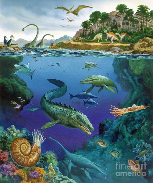 Photograph - Underwater Landscape Of Cretaceous by Publiphoto