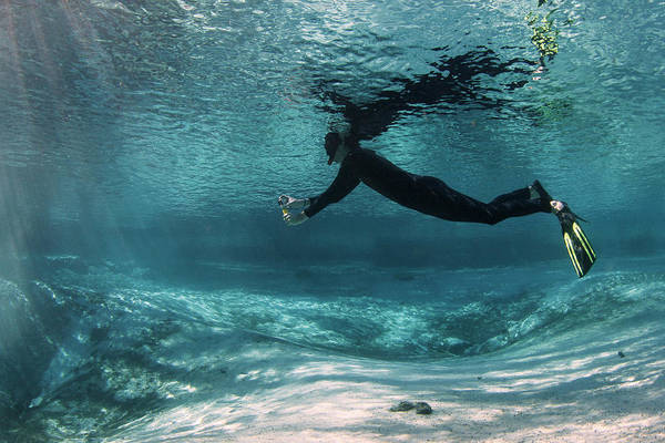Wetsuit Wall Art - Photograph - Underwater Photography by Michael Szoenyi