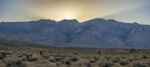 Wall Art - Photograph - Beauty Of The Desert by Jeremy Jensen