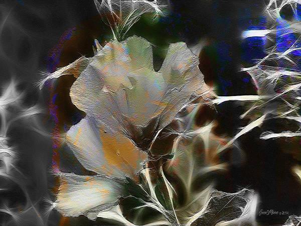 Photograph - Unique Rose Of Sharon - Feature Fractalius Fun by Ericamaxine Price