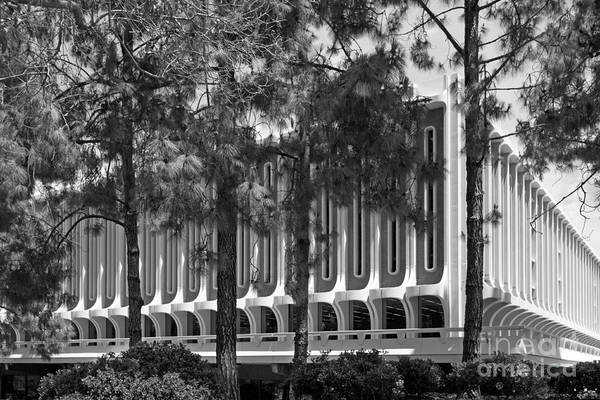 Photograph - University Of California Irvine Langson Library by University Icons