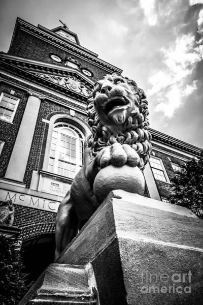 Lion Statue Photograph - University Of Cincinnati Lion Black And White Picture by Paul Velgos