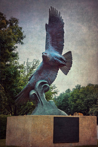 Unt Eagle In High Places Art Print