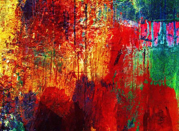 Untamed Colors  Art Print
