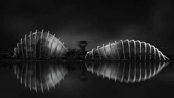 Low Key Photograph - Untitled by Dawei Li