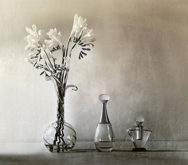 Vases Photograph - Untitled by Elena Arjona