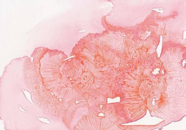 Organic Garden Drawing - Untitled - #ss13dw042 by Satomi Sugimoto