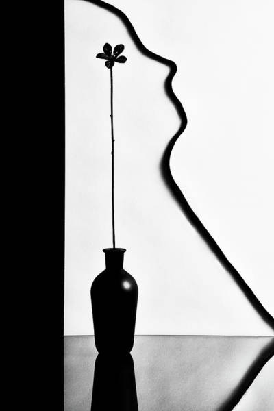 Vases Photograph - Untitled by Stephen Clough