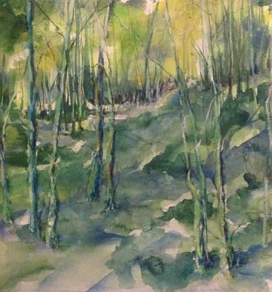 Untitled Swamp  Art Print