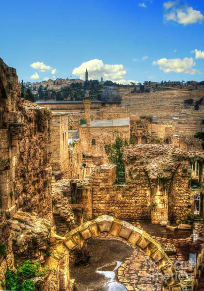 Photograph - King David Citadel  by Doc Braham