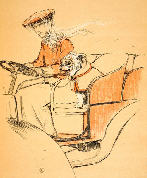 Hound Drawing - Up Front by Cecil Charles Windsor Aldin
