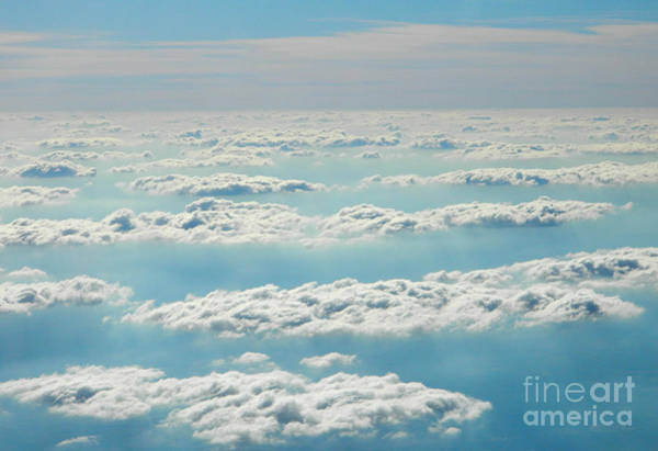 Photograph - Up In The Sky by Andrea Anderegg