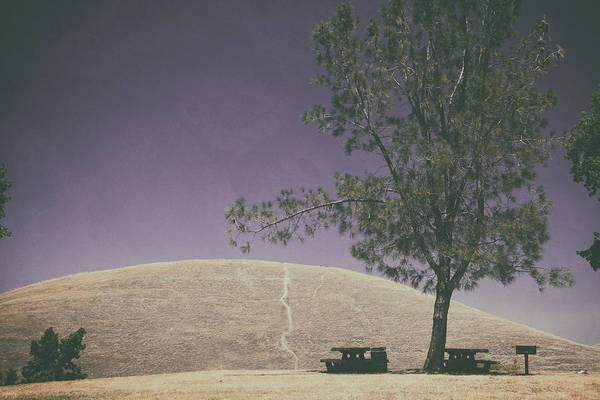 Picnic Tables Photograph - Up Into The Darkening Sky by Laurie Search