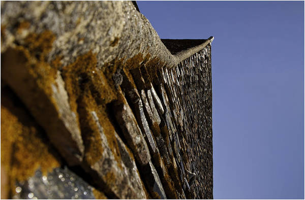 Tile Photograph - Up On The Roof by Nigel Jones