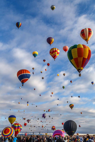 Photograph - Up Up And Away by Wes and Dotty Weber
