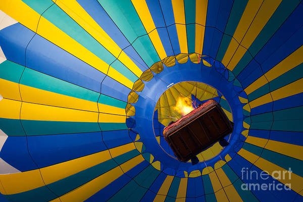 Photograph - Up Up And Away by Inge Johnsson