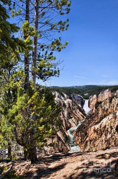 Photograph - Upper And Lower Yellowstone River Falls by Brenda Kean