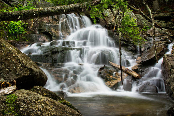 Photograph - Upper Beede Falls by Robert Clifford