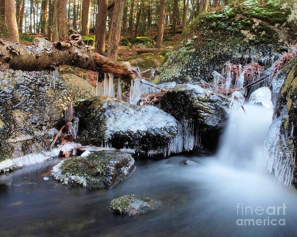 Wall Art - Photograph - Upper Burr Falls by Frank Piercy