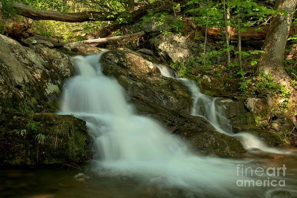 Photograph - Upper Doyles River Falls by Adam Jewell
