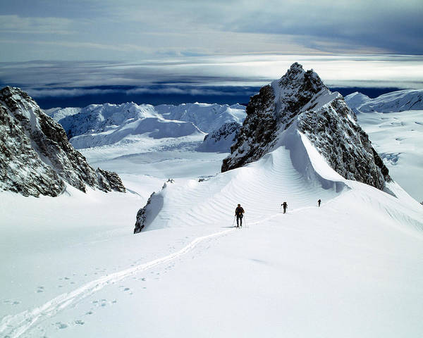 Ski Tracks Wall Art - Photograph - Upper Fox Glacier Westland Np New by Panoramic Images