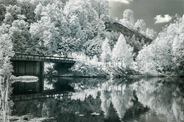 Photograph - Upper Mud River Wma  by Mary Almond