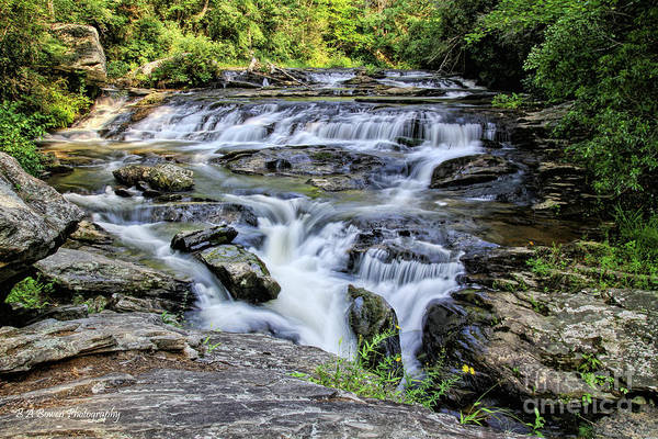 Photograph - Upper Panther Creek Falls by Barbara Bowen