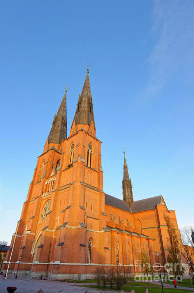 Photograph - Uppsala Cathedral In Sweden - Glowing In The Evening Light by David Hill