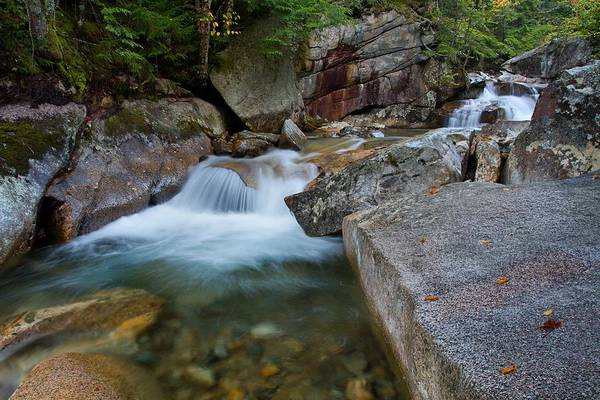 Photograph - Upstream by Mike Farslow