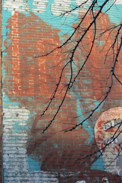 Photograph - Urban Decay Mural Wall 3 by Anita Burgermeister